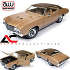 AUTOWORLD AMM1105 1:18 1970 BUICK SKYLARK GS HEMMINGS MUSCLE MACHINES GOLD