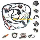 Complete Start Engine Wiring Harness Loom CDI CG150 250cc Quad Bike ATV Buggy