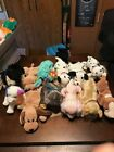 TY BEANIE BABIES LOT OF 13 DIFFERENT DOGS- RESCUE,SCOTTY,SPUNKY,TRACKER,DIZZY