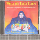 While the Eagle Sleeps by Alice Gomez (CD, Jan-1996, Talking Taco)