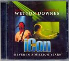 CD-Wetton/Downes-Icon Live '05 Prog Psych sounds