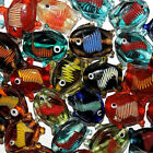 LAMPWORK GLASS FISH BEAD 26MM INDIA MIX 26 BEADS MULTI COLORED WITH STRIPES FG6