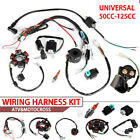 Quad Wire Harness Suitable For 50cc 90cc 70cc 110cc 125cc Chinese Electric Start