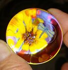 Dragonfly flower 18 in glass marble nature art glass marble by Joe Crisanti