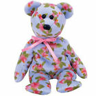 TY Beanie Baby - CINTA the Bear (Asia-Pacific Exclusive) (8.5 inch) - MWMTs
