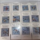 Alice Wilhoit Block of the Month Patterns Birds in Full View Set of 12