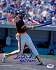 Dave Winfield Cards, Rookie Cards and Autographed Memorabilia Guide 37