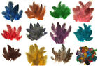 1 4 lb Spotted Guinea Hen Feathers 1 4 body plumage 12 colors 1600+ count
