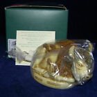 Harmony Kingdom~O GIVE ME A HOME~BUFFALO~BISON~NIB~made inEngland~BOX FIGURINE