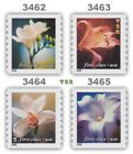 3462 65 3463 3464 3465 First Class 34 Flowers Coil Singles Set 4 MNH Buy Now
