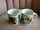 et of 2 Oneida Sakura Sonoma Excell Mugs Cups Fruit Pattern Stoneware Lot # 2