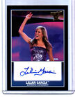 2013 Topps Best of WWE Autographs Guide 28