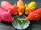 Pet Dog Puppy Chew Fetch Play Toy Pig Design Squeaker Squeaky With Sound Rubber