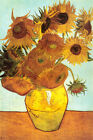 Sunflowers c1888 Art Print By Vincent van Gogh 24x36