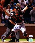 Buster Posey Autographed Signed 8x10 Photo San Francisco Giants PSA DNA #AA38447