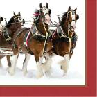 Clydesdales Horses Animal Winter Christmas Holiday Party Paper Beverage Napkins