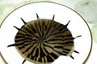 FITZ & FLOYD COQUILLE COMBINEES Japan 1981 nautilus SHELL PLATE (2)  EXC