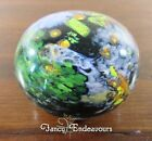 4-94 Drew Ebelhare Art Glass Aquatic Abstractions Paperweight