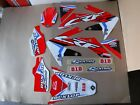 PRO TEAM  GRAPHICS  HONDA CRF250R  2004 2005 2006 2007 2008 2009   #11123