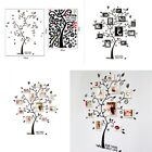 US DIY Family Tree Wall Decal Sticker Large Vinyl Photo Picture Frame Removable