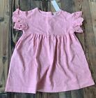 GYMBOREE Beautiful Pink Eyelet Easter Dress Spring Nwt Girls Size 18 24 M