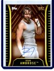 2018 Topps WWE NXT Wrestling Cards 14