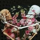 DELAIN Hunter's Moon CD ( MELODIC METAL FEMALE VOCALS )