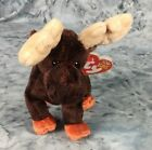 TY Beanie Baby ZEUS The Moose Stuffed Animal Toy Collectible 6. 5 inches MWMTs