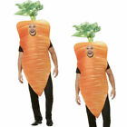 Christmas Carrot Costume Orange Nativity Novelty Fun Fancy Dress Adults Outfit N