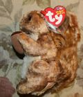 Ty Beanie Babies NUTTY  RETIRED with ERRORS 2002 NEW  AUTHENTIC