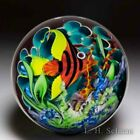 Mayauel Ward 2019 red angelfish in coral reef compound glass paperweight