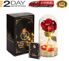 Beauty and The Beast Rose Enchanted Rose Flower Lights in Glass