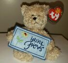 Ty Beanie Baby ~ FOREVER FRIENDS the Bear (Greetings Collection)(5 Inch) MWMT