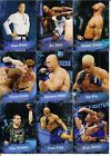 Brock Lesnar Cards, Rookie Cards and Autographed Memorabilia Guide 73