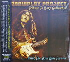 SHADOWPLAY PROJECT-PAINT THE SKIES BLUE FOREVER: RORY GALLAGHER-IMPORT CD F30
