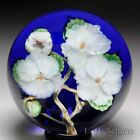 Lundberg Studios 1990 Apple Blossoms paperweight by Daniel Salazar