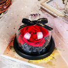 Rose Preserved Flower Handmade in Glass Dome Gift For Valentines Mothers Day