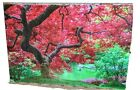 Cherry blossom Tempered Glass Wall Art Large Acrylic and Glass
