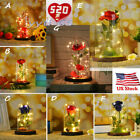 Enchanted Forever Rose Flower In Glass Cover LED Light Lamp Mothers Day Gift US
