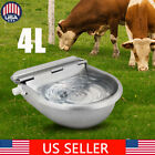 4L Stainless Steel Automatic Water Trough Horse Cow Sheep Livestock Goat Bowl US