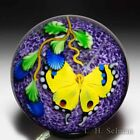Mayauel Ward 2020 yellow butterfly and blue flowers compound paperweight