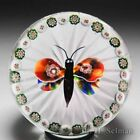 Antique Baccarat millefiori butterfly and garland glass paperweight