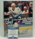 San Jose Sharks Collecting and Fan Guide 80