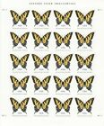 EASTERN TIGER SWALLOWTAIL BUTTERFLY STAMP SHEET USA 4999 71 CENT 2015