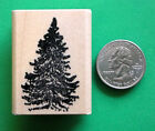 Pine Tree Wood Mounted Rubber Stamp