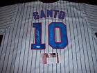 RON SANTO CHICAGO CUBS,342HR,9XAS,5XGG JSA COA SIGNED JERSEY