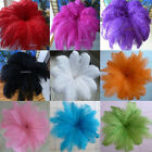 Beautiful 10 200pcs natural ostrich feathers 8 10inch 20 25cm