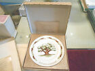 Avon plates 2nd and 5th anniversary in box Wedgwood