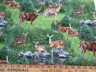 Deer Drinking By Pond And More Elizabeth Studio Cotton Fabric