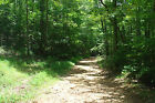 50 DOWN 401 MTH 20+ ACRES MIDDLE TENNESSEE LAND GREAT HUNTING